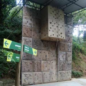 Muro de escalada
