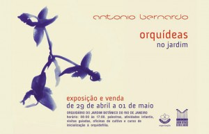 orquideas no jardim