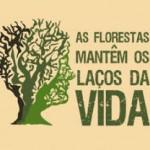 AsFlorestasMantemOsLacosDaV
