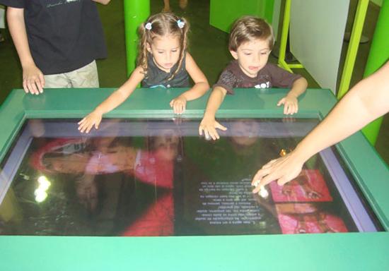 Bienal 2009