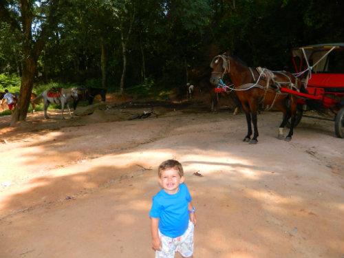 Cavalinhos para aluguel - Foto de Cariocando por aí.