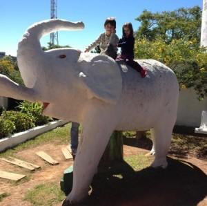 Campos do Jordão - Morro do Elefante