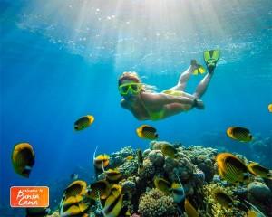 Zarpo - Welcome to Punta Cana